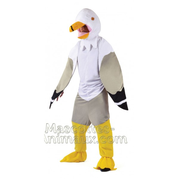 Discounted Shark Mascot costume and disguise